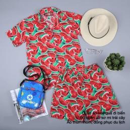 Bộ quần áo hoa quả nam
