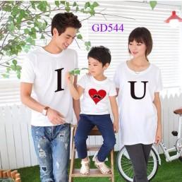 Áo phông gia đình Hà Nội